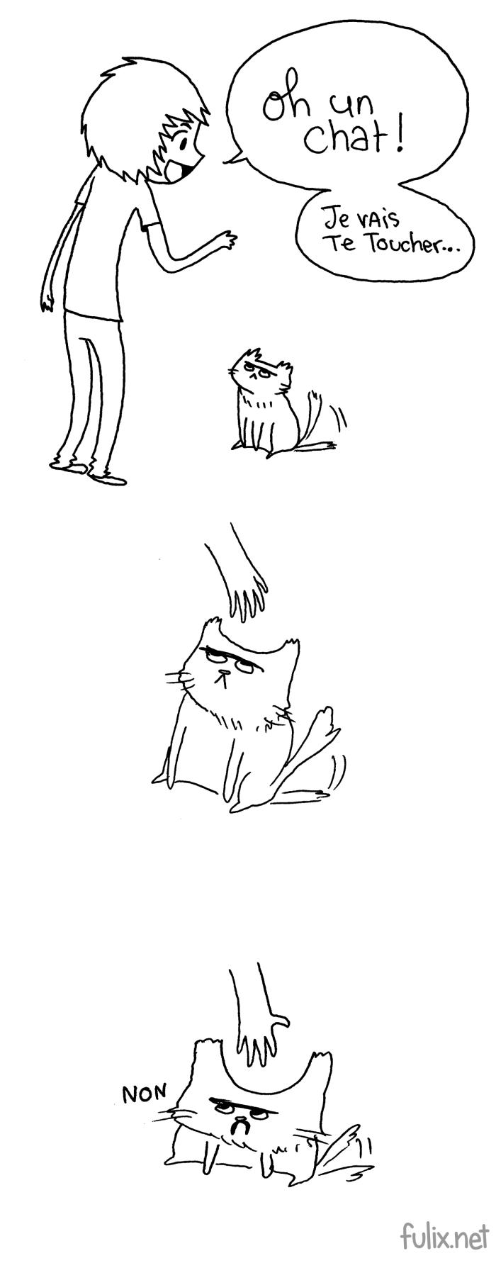 J'aime trop les chats!